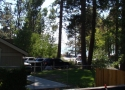 filtered-lake-view