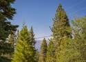 Peak-A-View